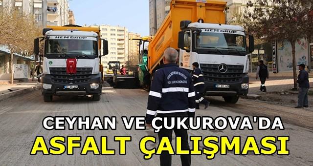 Ceyhan ve Çukurova'da asfalt çalışması