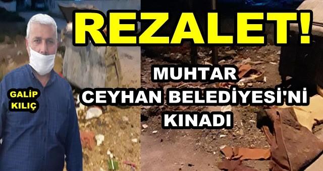 CHP'li Belediye, Ceyhan'ı pisliğe mahkum etti!