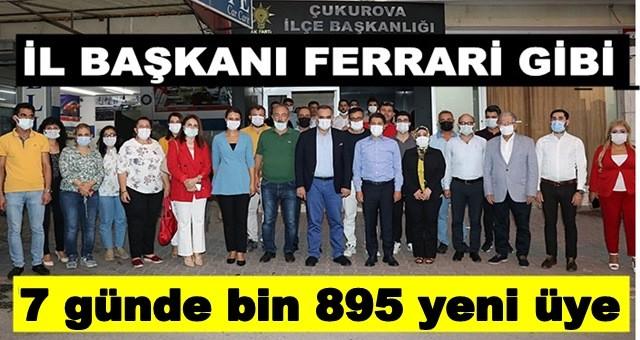 AK Parti Adana'da İlk 7 günde bin 895 yeni üye