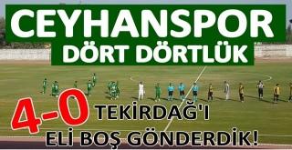 İçel'i dize getiren Ceyhanspor, Tekirdağ'a patladı. 4-0